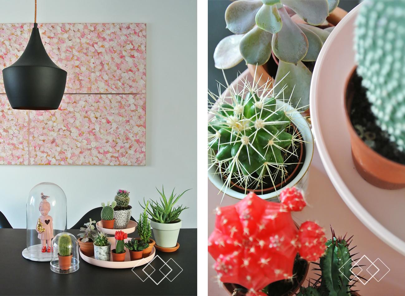 Cactus - staand