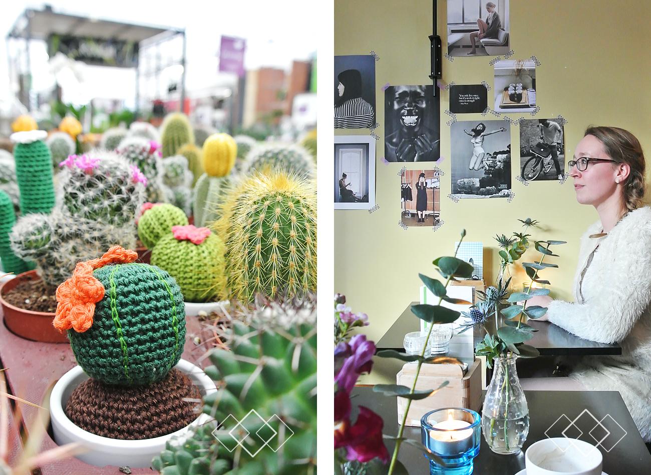 Cactussen - staand