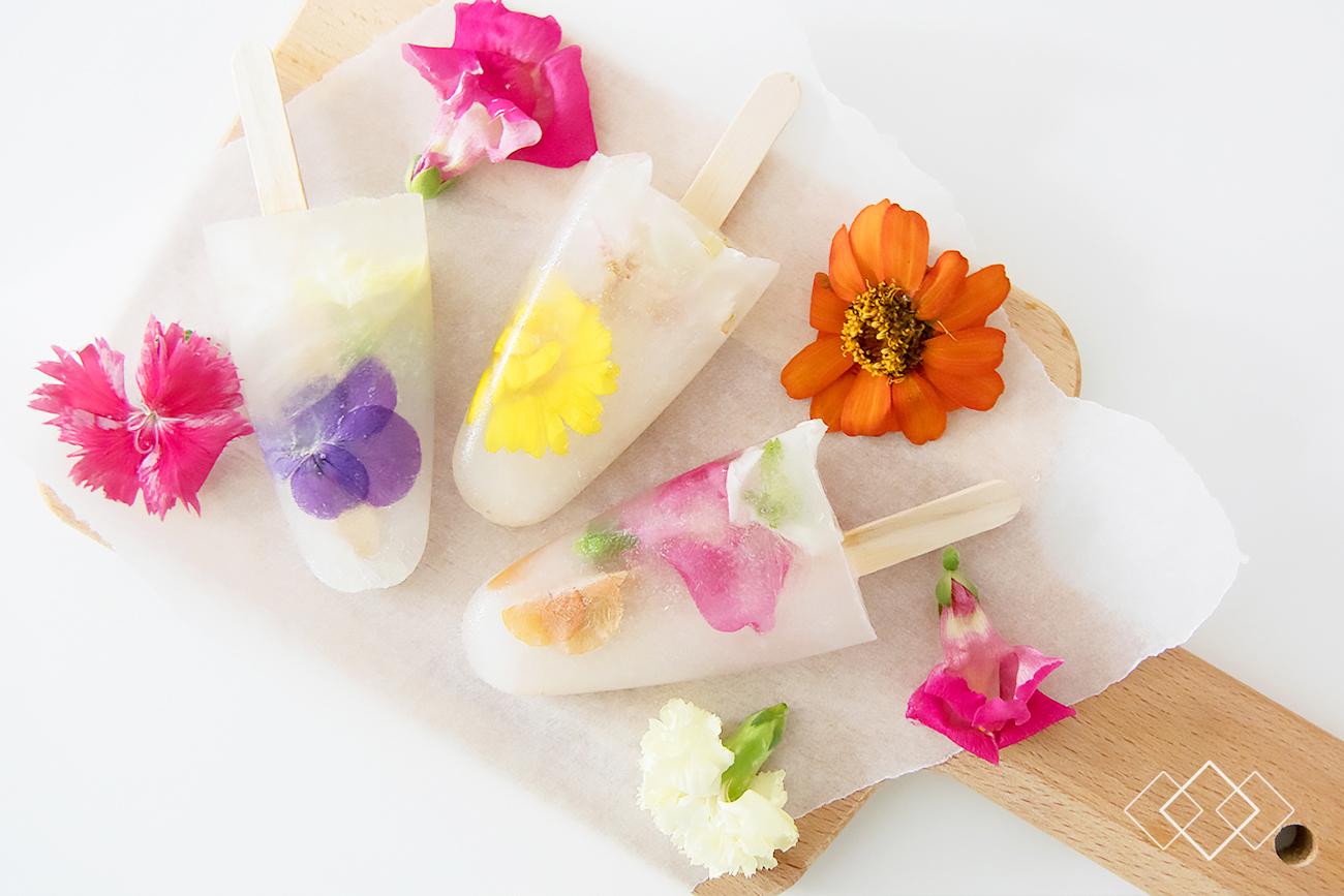Bloombites ijsjes - liggend 2