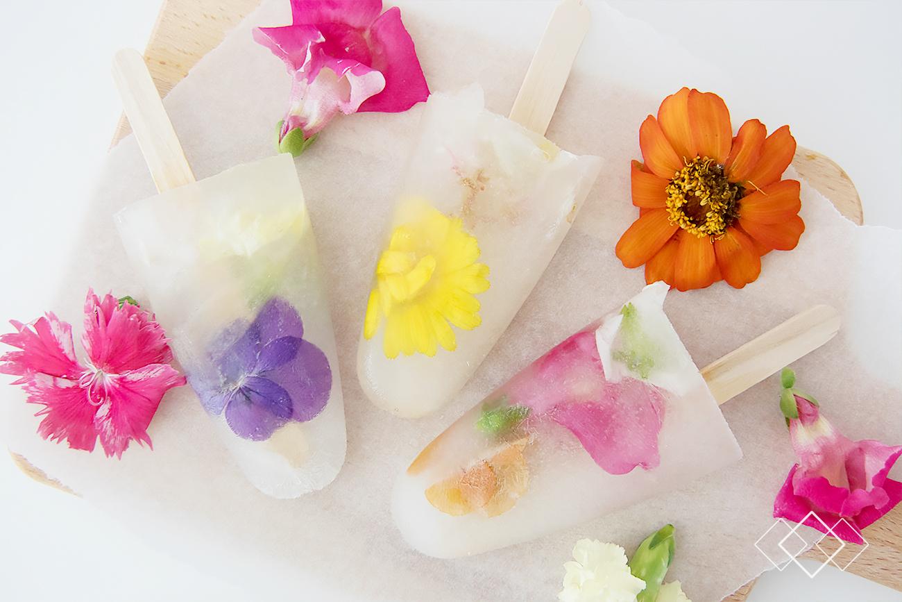 Bloombites ijsjes - liggend