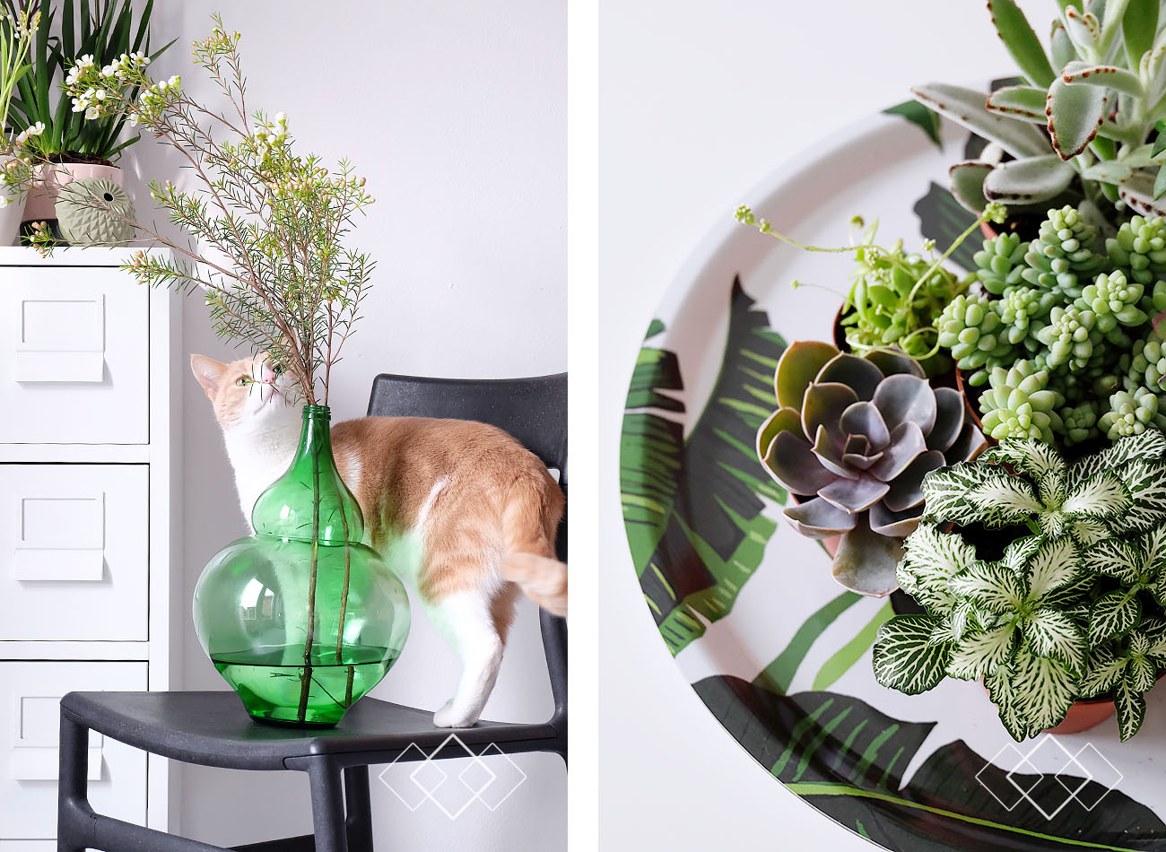 Plantjes 1 - staand