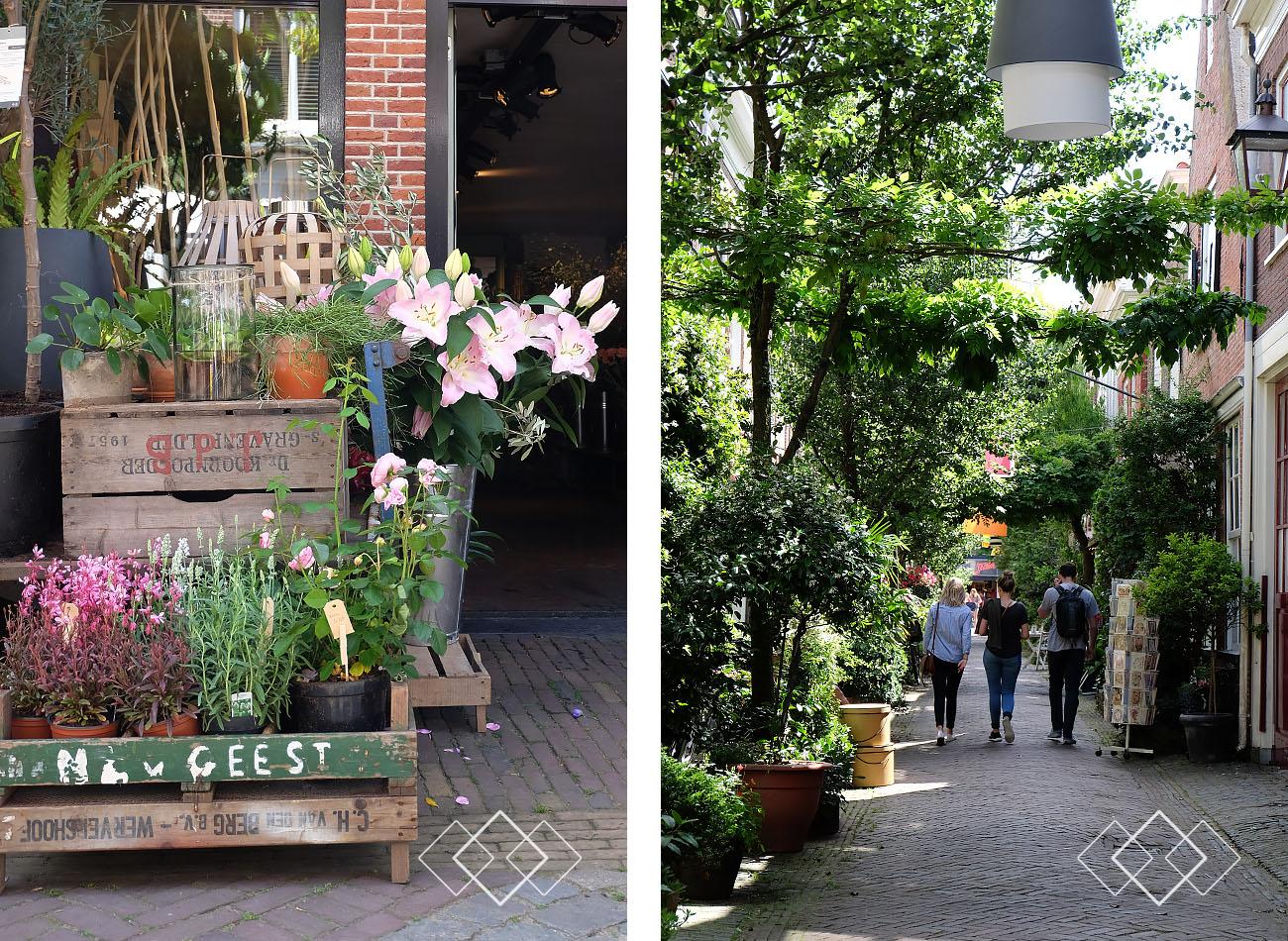 Haarlem - staand